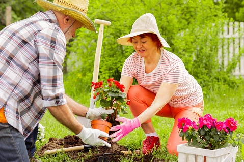 Gardening Tips When We Are Growing Older
